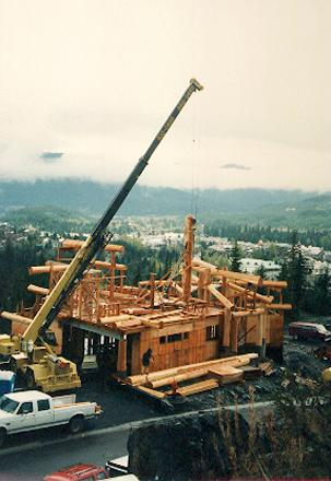 Crane lifts in the over 400 year old giant red cedar main post .